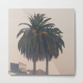 Palm tree at sunset print Metal Print