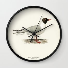Black-headed gull  (Larus ridibundus) illustrated by the von Wright brothers Wall Clock