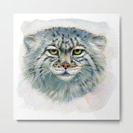 Pallas's cat 862 Metal Print