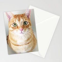 Echo Park Cats Stationery Cards