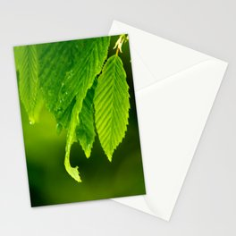 Wet leaves Stationery Cards