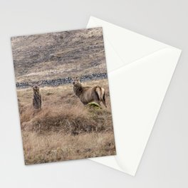 Family of wild red Scottish deer and stags Stationery Cards