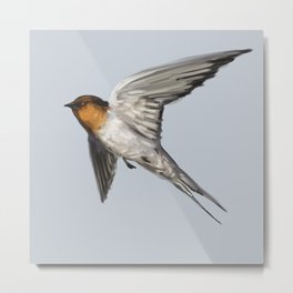 Welcome Swallow Metal Print