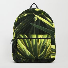 Two Succulents in Shadow and Sunlight Backpack