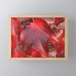 Red Leaves Framed Mini Art Print