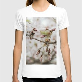Japanese Cherry Flower Printable Wall Art | Floral Plant Botanical Nature Outdoors Macro Photography Print T-shirt