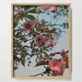 Malus Brandywine Crabapple Blossom Serving Tray