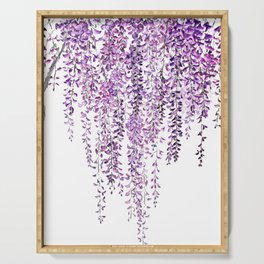 purple wisteria in bloom Serving Tray