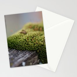Little Moss Stationery Cards