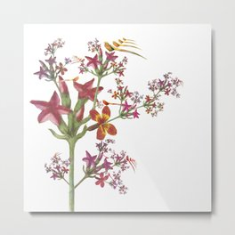 Stranger than you First Thought Impossible Bird Floral  Metal Print