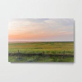 Summer Fields, Glasgow, Montana Metal Print