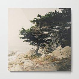 Carmel by the Sea Metal Print