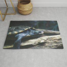 Testudo the Turtle Rug