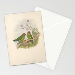 003 Double eyed Perroquet Double eyed Fig Parrot cyclopsitta diophthalma4 Stationery Cards
