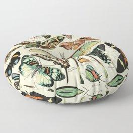 French Vintage Butterflies Chart Adolphe Millot Papillons Larousse Pour Tous Poster  Floor Pillow