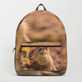I wasn't going to eat it, I was just going to taste it Backpack