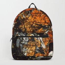 Pyroxene Crystals Backpack