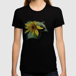Pot Botany at the Laurels 1 T-shirt