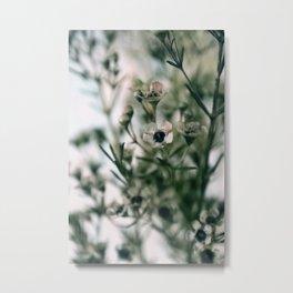 Tea Tree Blossom - JUSTART (c) Metal Print