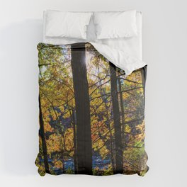 Walden Pond Autumn Forest  in Concord Massachusetts Comforters