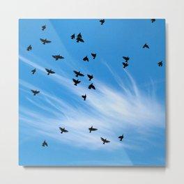 Birds Flying In Big Blue Sky Metal Print
