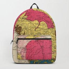 Vintage Wisconsin Geology Map (1878) Backpack
