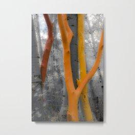 Art Au Naturale Metal Print
