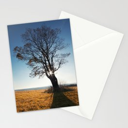 Between the Branches Stationery Cards