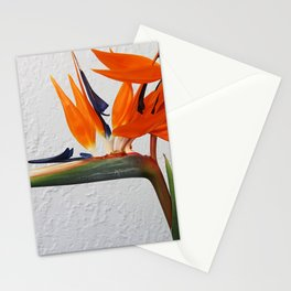 Double Bird Stationery Cards