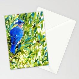Mr. Big Blue Stationery Cards