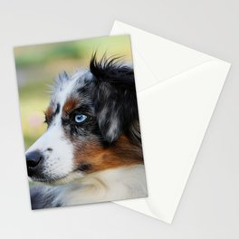 Australian Shepherd Blue Merle Dog Stationery Cards