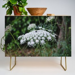 Queen Anne's Lace Credenza