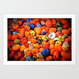 Colorful Tiny Pumpkins Art Print