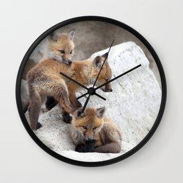 Watercolor Fox, Red Fox 10, Union Reservoir, Boulder Wall Clock