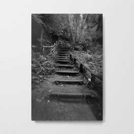 Surreal Magical Forest - Black and White Study  Metal Print
