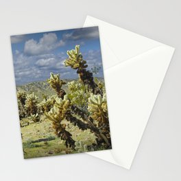 Cactus called teddy bear cholla No.0265 Stationery Cards