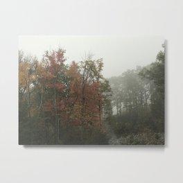Foggy Morn Metal Print