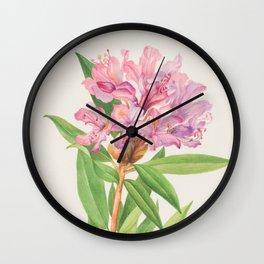 California Rose Bay Rhododendron Botanical Print, Mary Vaux Walcott Wall Clock