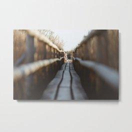 Wooden Pathway. || Nature Shots. || Kaņieris, Latvia. Metal Print
