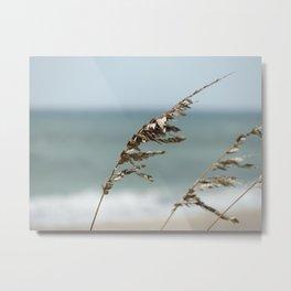 Sea oats Metal Print