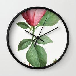 Lily magnolia (Magnolia discolor) from Traite des Arbres et Arbustes que lon cultive en France en pl Wall Clock