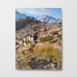 View from Mueller Hut - Landscape and Nature Photography Metal Print