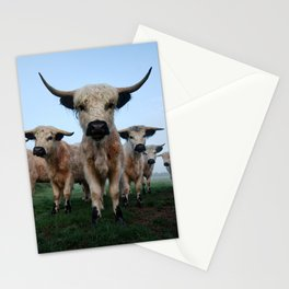 High Park Cattle Stationery Cards