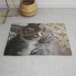 Kittens Rug