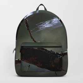 Watercolor Spider Web 01 Backpack