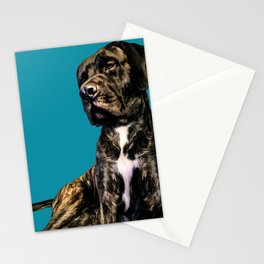 Pop art Mastiff dog portrait Stationery Cards