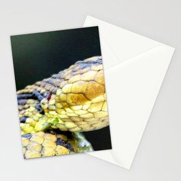 Watercolor Snake, Water Moccasin 01, Merchants Millpond, North Carolina Stationery Cards