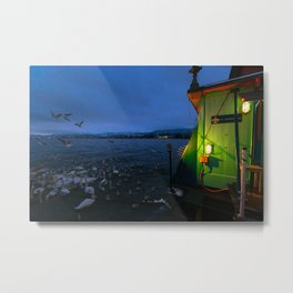 Along Zurich Lake By Night Metal Print