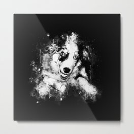 australian shepherd aussie dog puppy splatter watercolor black white Metal Print