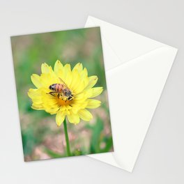 Nature In April - 2 Stationery Cards